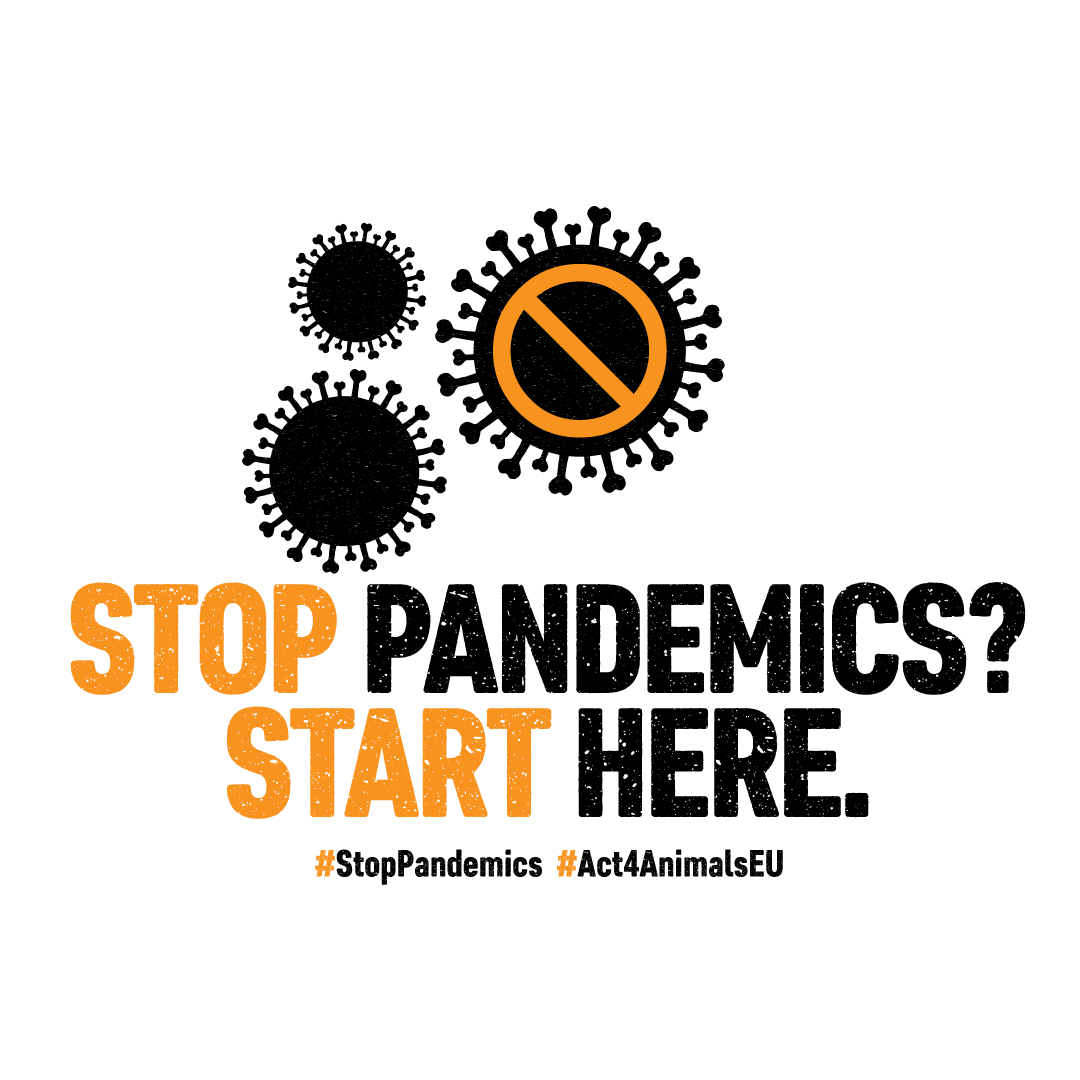 Stop pandemics? Start here!